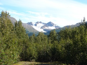 View of Exit Glacier from the visitors center