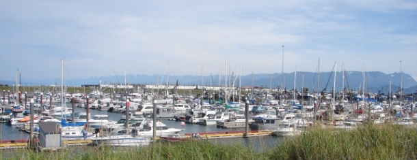 Homer marina (still crowded, even in September)